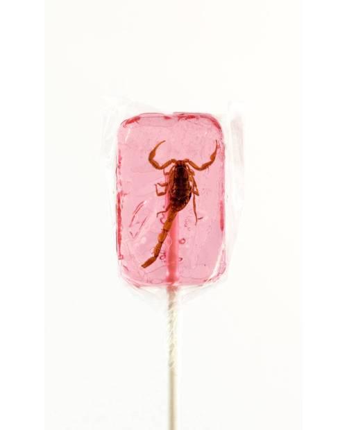 Strawberry lollipop Scorpio