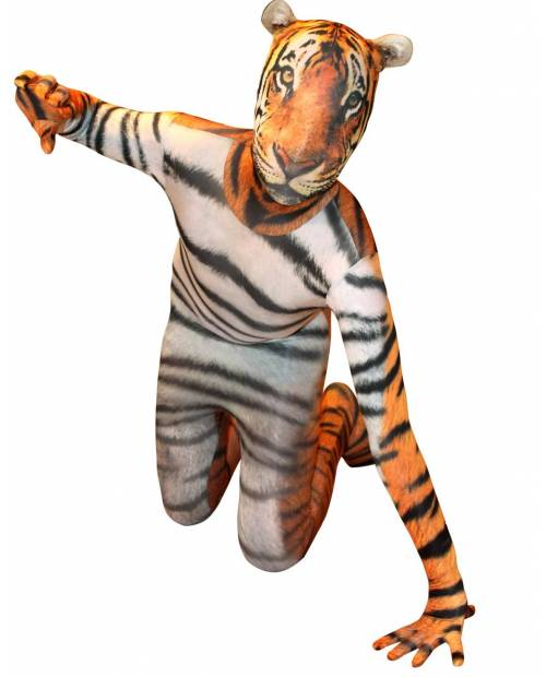 Costumes Tiger