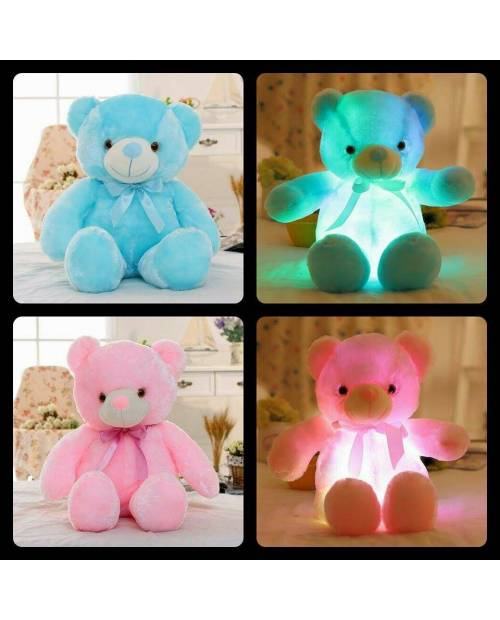 Ours Peluche Lumineux